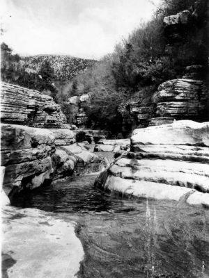 Rogovos natural swimming pools