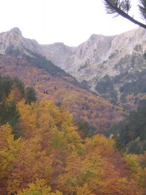 Autumn on Mt. Olympus