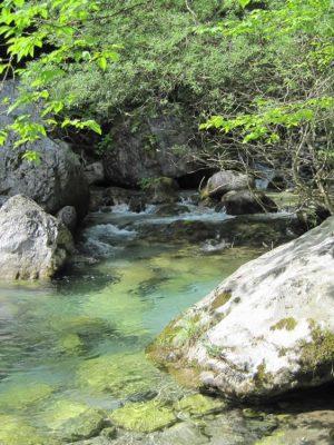 Inside Enippeas Gorge
