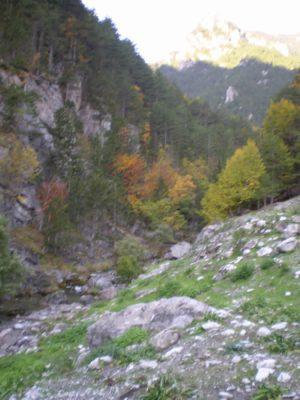 Valia Kalda