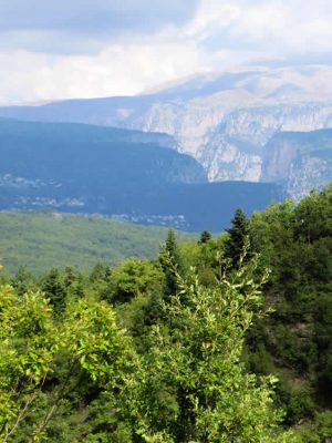 Vikos Gorge from the path to Elati