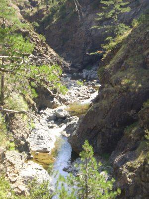 Wild nature in Vikos Gorge